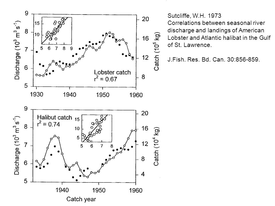 Sutcliffe, W.H. 1973 Correlations between seasonal river discharge and landings of American Lobster and Atlantic halibat in the Gulf of St. Lawrence.