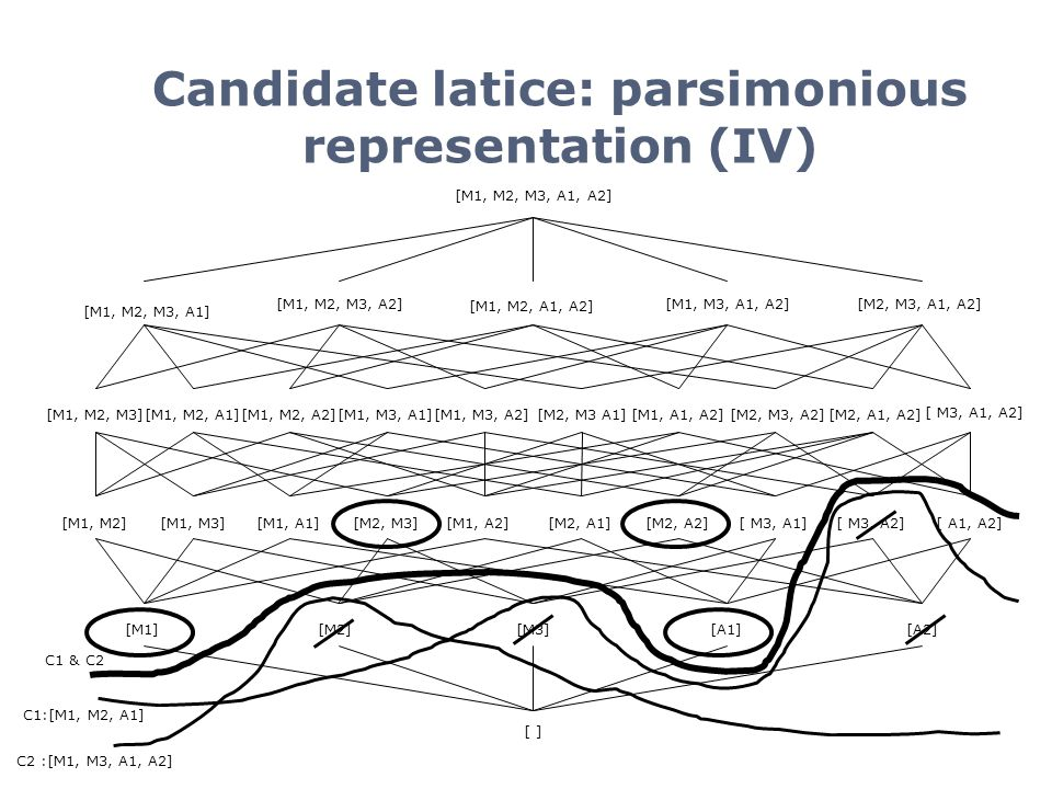 Candidate latice: parsimonious representation (IV)