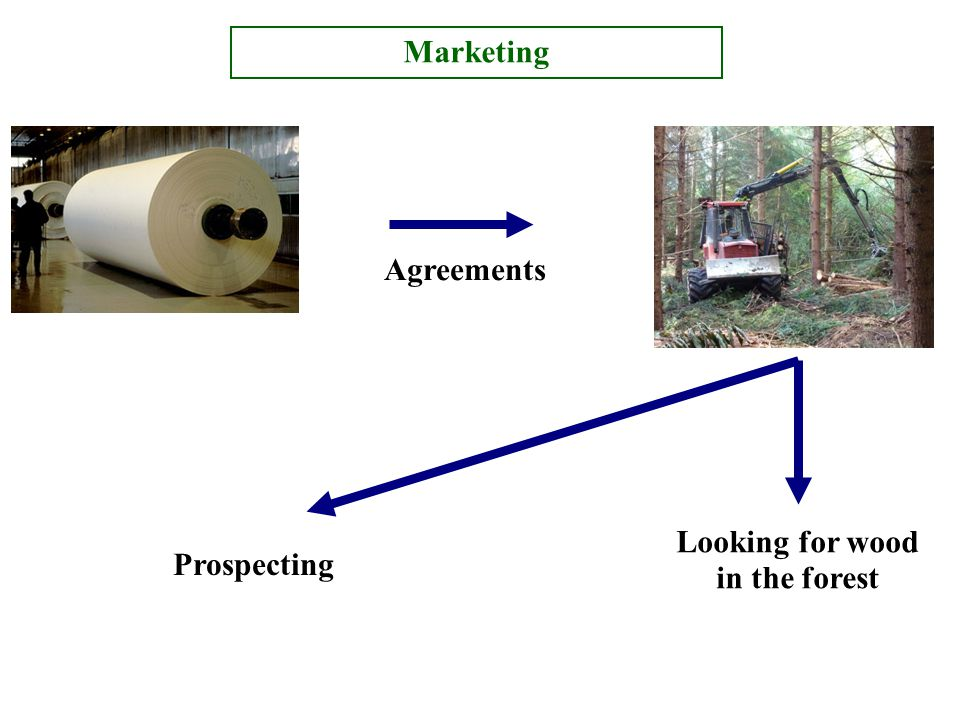 Agreements Looking for wood in the forest Prospecting Marketing
