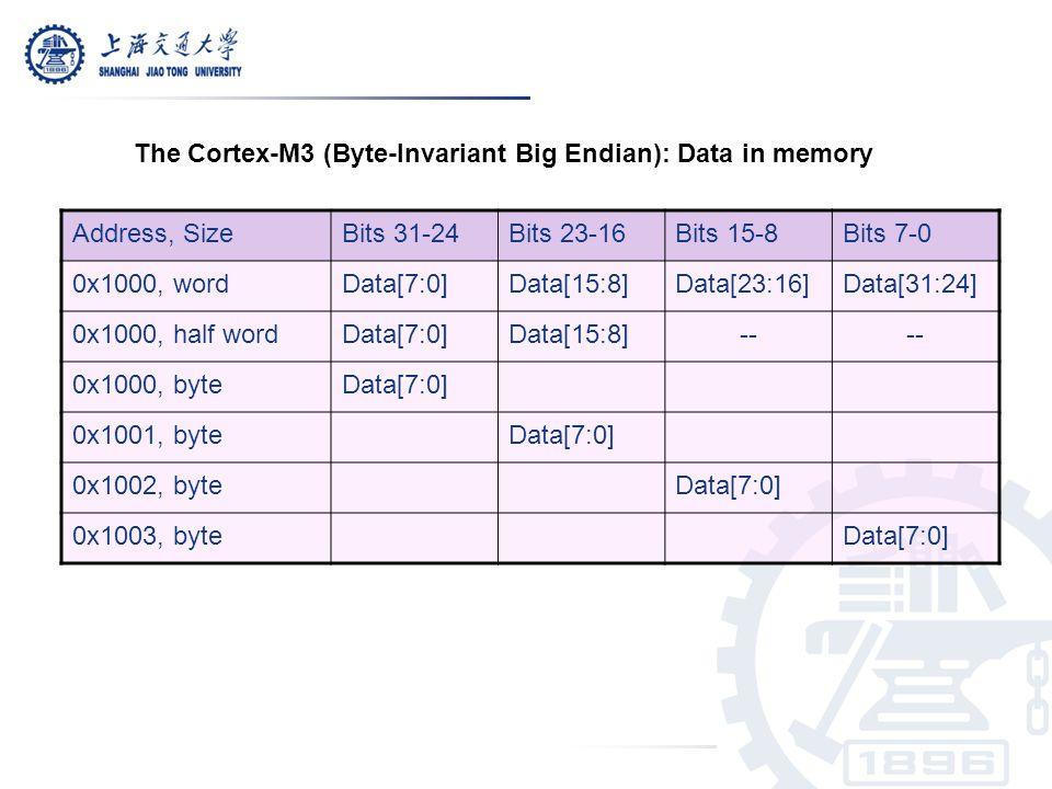 Address, SizeBits 31-24Bits 23-16Bits 15-8Bits 7-0 0x1000, wordData[7:0]Data[15:8]Data[23:16]Data[31:24] 0x1000, half wordData[7:0]Data[15:8]-- 0x1000