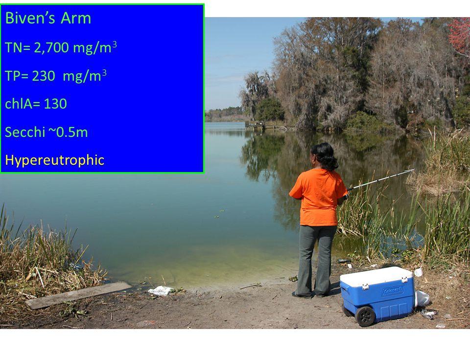 Biven's Arm TN= 2,700 mg/m 3 TP= 230 mg/m 3 chlA= 130 Secchi ~0.5m Hypereutrophic