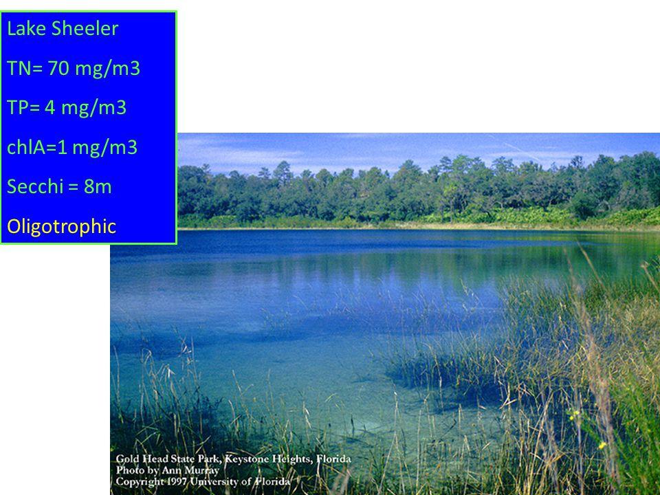 Lake Sheeler TN= 70 mg/m3 TP= 4 mg/m3 chlA=1 mg/m3 Secchi = 8m Oligotrophic