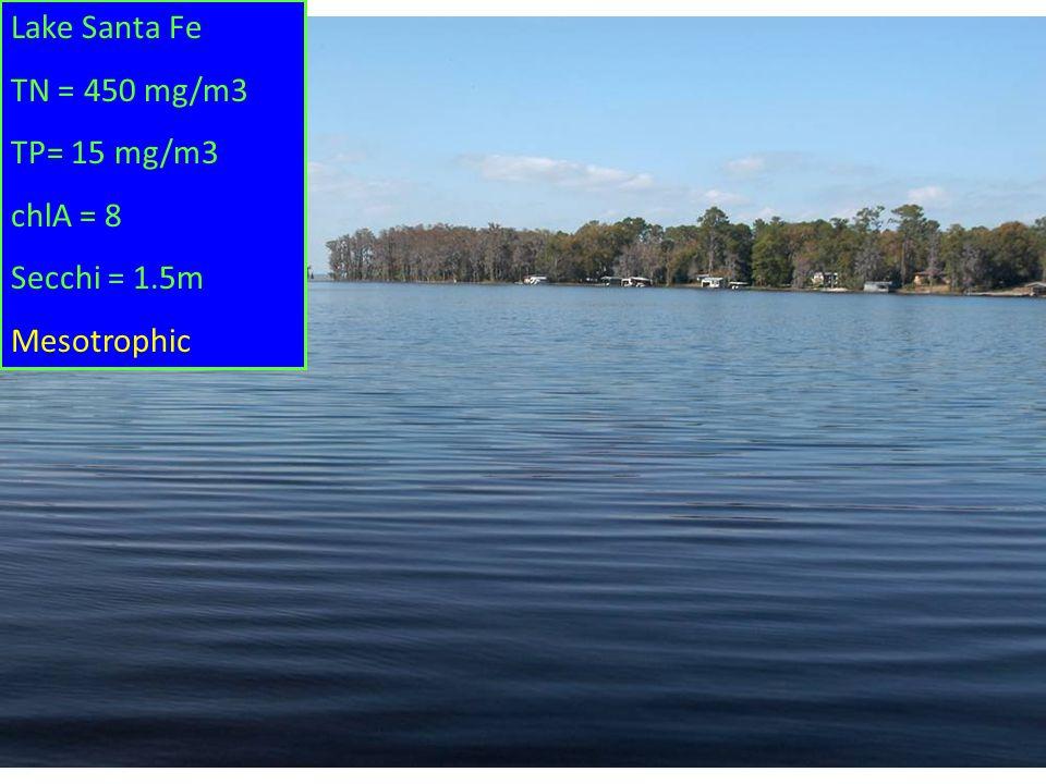 Lake Santa Fe TN = 450 mg/m3 TP= 15 mg/m3 chlA = 8 Secchi = 1.5m Mesotrophic