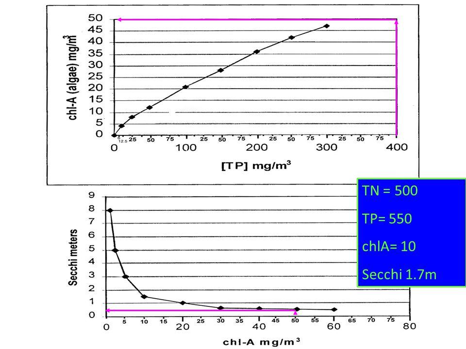TN = 500 TP= 550 chlA= 10 Secchi 1.7m