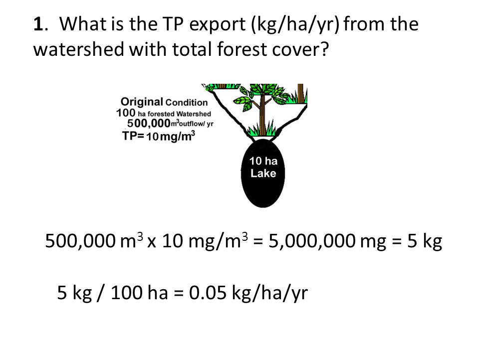1. What is the TP export (kg/ha/yr) from the watershed with total forest cover.