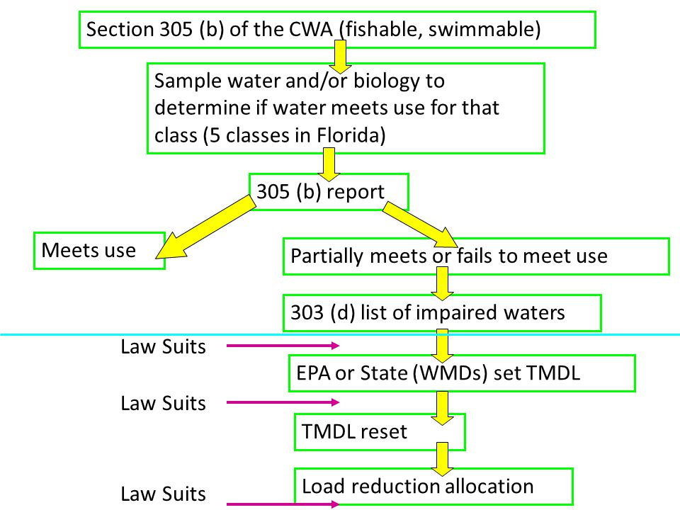 Section 305 (b) of the CWA (fishable, swimmable) Sample water and/or biology to determine if water meets use for that class (5 classes in Florida) 305 (b) report Meets use Partially meets or fails to meet use 303 (d) list of impaired waters EPA or State (WMDs) set TMDL TMDL reset Load reduction allocation Law Suits