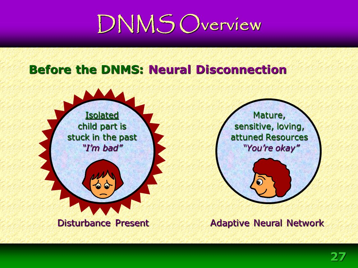 """27 Before the DNMS: Neural Disconnection Adaptive Adaptive Neural Network Disturbance Present Mature, sensitive, loving, attuned Resources """"You're oka"""
