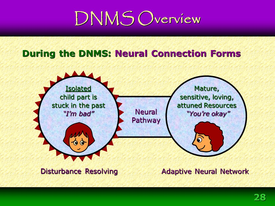 """28 Neural Pathway During the DNMS: Neural Connection Forms Disturbance Resolving Mature, sensitive, loving, attuned Resources """"You're okay"""" """"You're ok"""