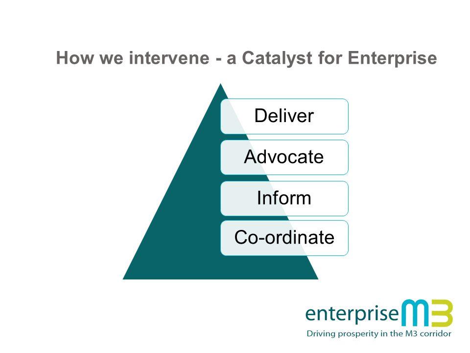 How we intervene - a Catalyst for Enterprise DeliverAdvocateInformCo-ordinate