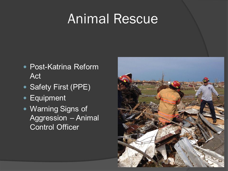 Animal Rescue Post-Katrina Reform Act Safety First (PPE) Equipment Warning Signs of Aggression – Animal Control Officer