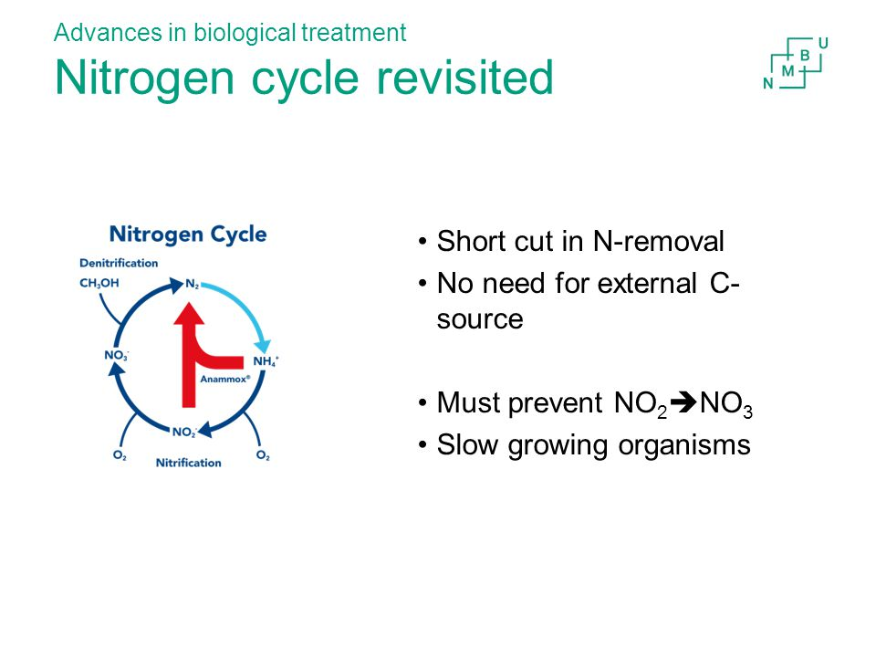 Advances in biological treatment Nitrogen cycle revisited Short cut in N-removal No need for external C- source Must prevent NO 2  NO 3 Slow growing organisms