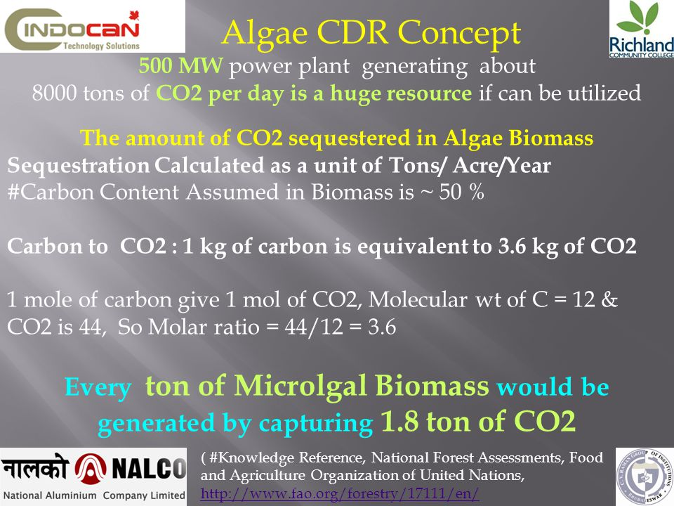 We can calculate Biogas based on the carbon content of the Algae 1000 kg wet Algae Water content = 480 kg Solids content = 520 kg dry matter (52%TS) Organic dry matter =322 kg dry matter (32%ODM) 50% carbon content in the ODM Carbon in 1000kg of wet Algae = 322 x 50 / 100) kg C = 161 kg C If % of carbon biodegraded is 60% Then 161 x 60 /100 = 96.6 kg C converted to biogas From Buswell, 55% CH4 and 45% CO2 Weight of methane carbon (CH4 –C) 96.6 x 0.55 = 53.13 kg C Weight of methane (CH4 ) 53.13 x 16/12 =70.88 kg CH4 1 mol gas at STP = 22.4 litres 16g CH4 = 22.4 litres 70880g CH4 = 70880/16 mols = 4430 mols CH4 4430 x 22.4 = 99232 litres CH4 = 99.2 m3 CH4 m3 CH4 m3 CO2 m3 CH + 81.4 m CO = 180.6 m 1000 kg residual waste = 99.2 m biogas