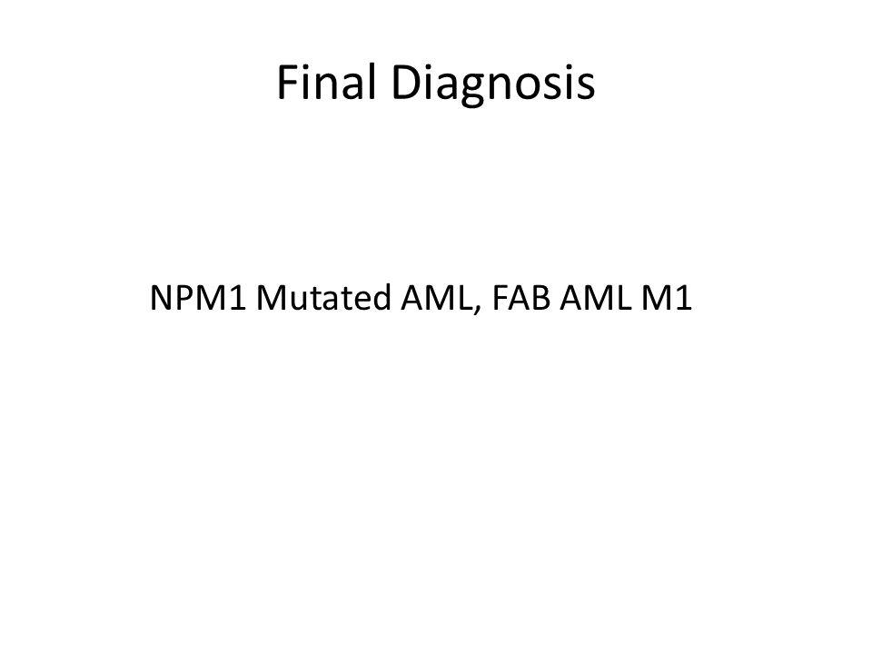Final Diagnosis NPM1 Mutated AML, FAB AML M1