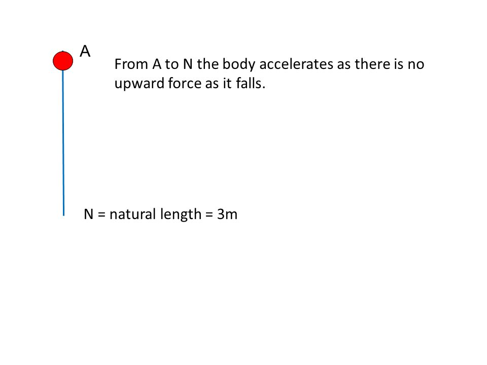 N = natural length = 3m A From A to N the body accelerates as there is no upward force as it falls.