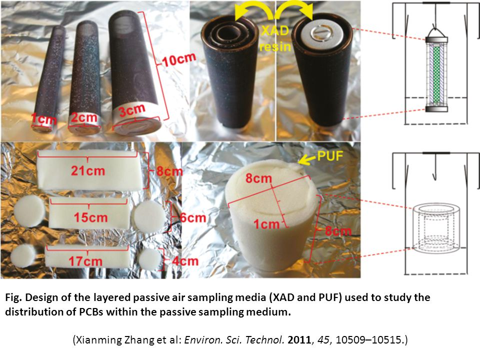 Fig. Design of the layered passive air sampling media (XAD and PUF) used to study the distribution of PCBs within the passive sampling medium. (Xianmi