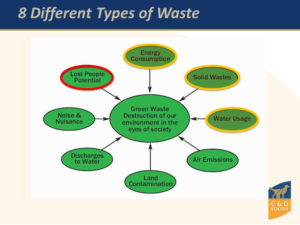 8 Different Types of Waste