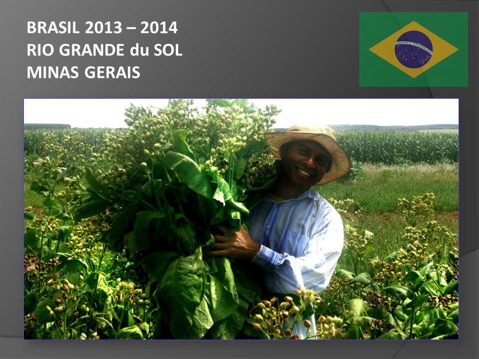 BRASIL 2013 – 2014 RIO GRANDE du SOL MINAS GERAIS