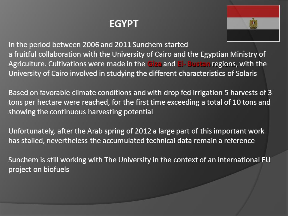 EGYPT In the period between 2006 and 2011 Sunchem started Giza El- Bustan regions, a fruitful collaboration with the University of Cairo and the Egypt