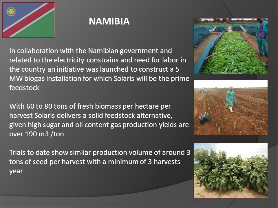 NAMIBIA In collaboration with the Namibian government and related to the electricity constrains and need for labor in the country an initiative was la