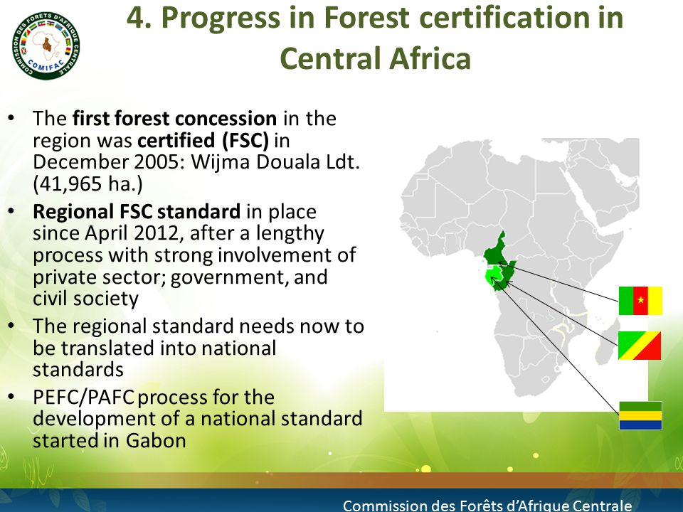 4.Progress in Forest certification in Central Africa (cont.) Today: 4,2 Mio.