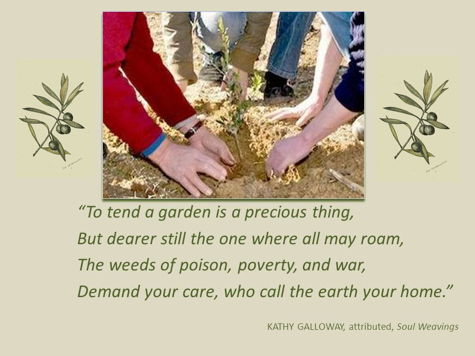 To tend a garden is a precious thing, But dearer still the one where all may roam, The weeds of poison, poverty, and war, Demand your care, who call the earth your home. KATHY GALLOWAY, attributed, Soul Weavings