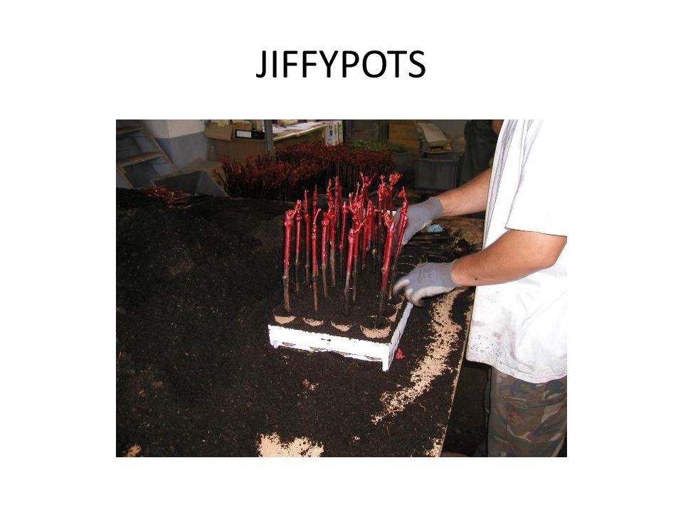 JIFFYPOTS