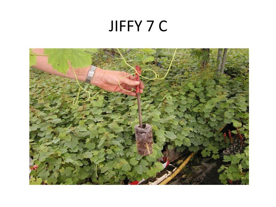 JIFFY 7 C