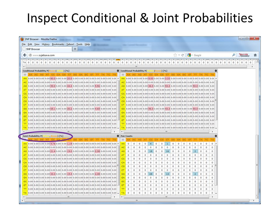 Inspect Conditional & Joint Probabilities