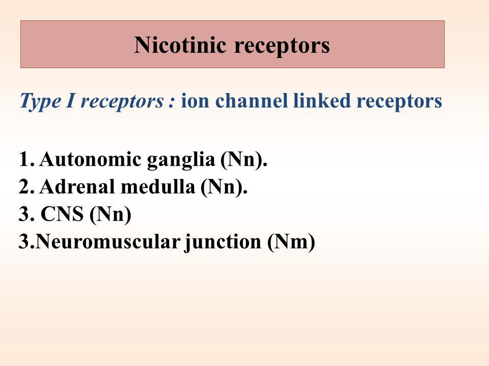 Cholinergic or parasympathetic receptors Nicotinic (N, central cholinergic ) receptors. Muscarinic (M, peripheral cholinergic) receptors. Central nico