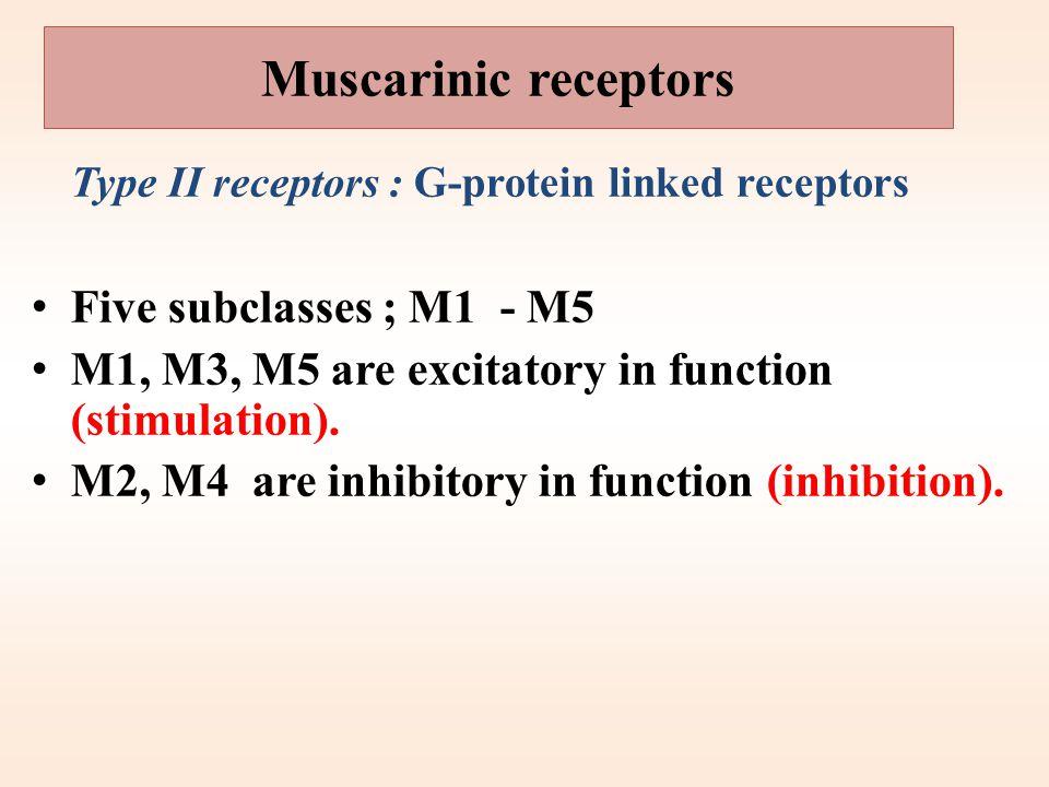 Type I receptors : ion channel linked receptors 1. Autonomic ganglia (Nn). 2. Adrenal medulla (Nn). 3. CNS (Nn) 3.Neuromuscular junction (Nm) Nicotini