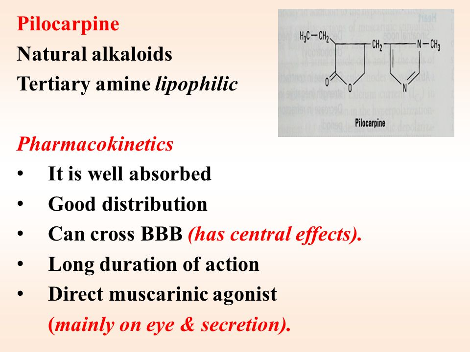 Acetylcholine (Ach) Muscarinic and nicotinic agonist Not used clinically because Ach – Is not selective (N, M) – Has short duration of action. Why? –