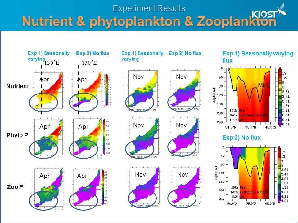 Exp 1) Seasonally varying flux Exp 2) No flux MLD Exp 2) No flux Exp 1) Seasonally varying Nutrient Phyto P Zoo P Apr Exp 1) Seasonally varying Nov Exp 2) No flux 130°E
