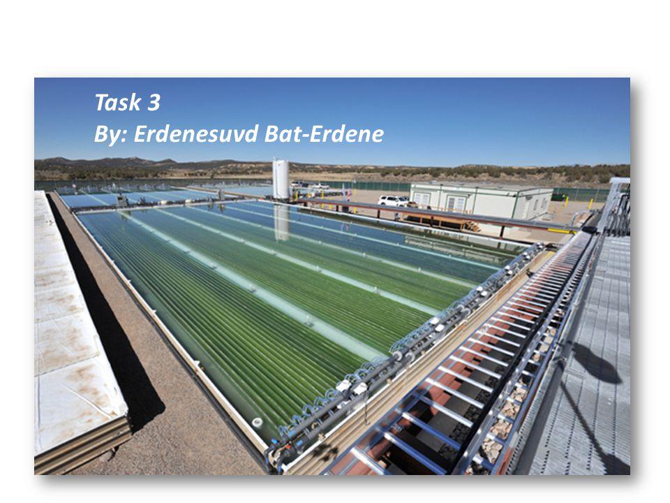 Task 3 By: Erdenesuvd Bat-Erdene