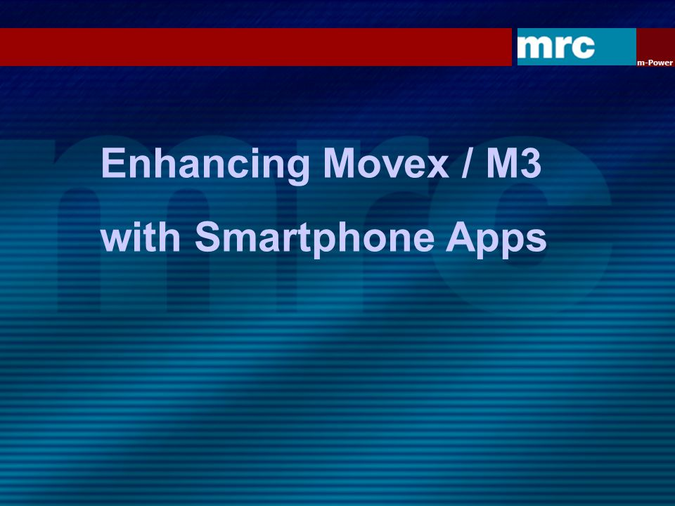Enhancing Movex / M3 with Multilingual Websites
