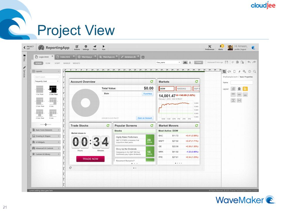 Project View 21