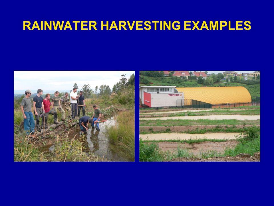 RAINWATER HARVESTING EXAMPLES