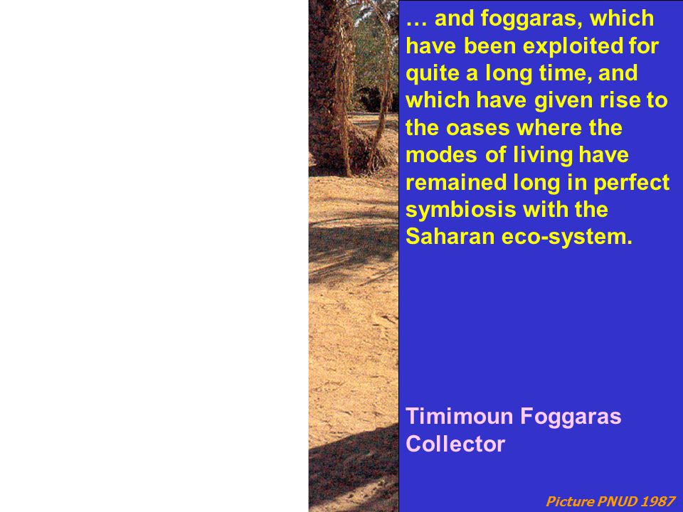 Picture PNUD 1987 … and foggaras, which have been exploited for quite a long time, and which have given rise to the oases where the modes of living have remained long in perfect symbiosis with the Saharan eco-system.