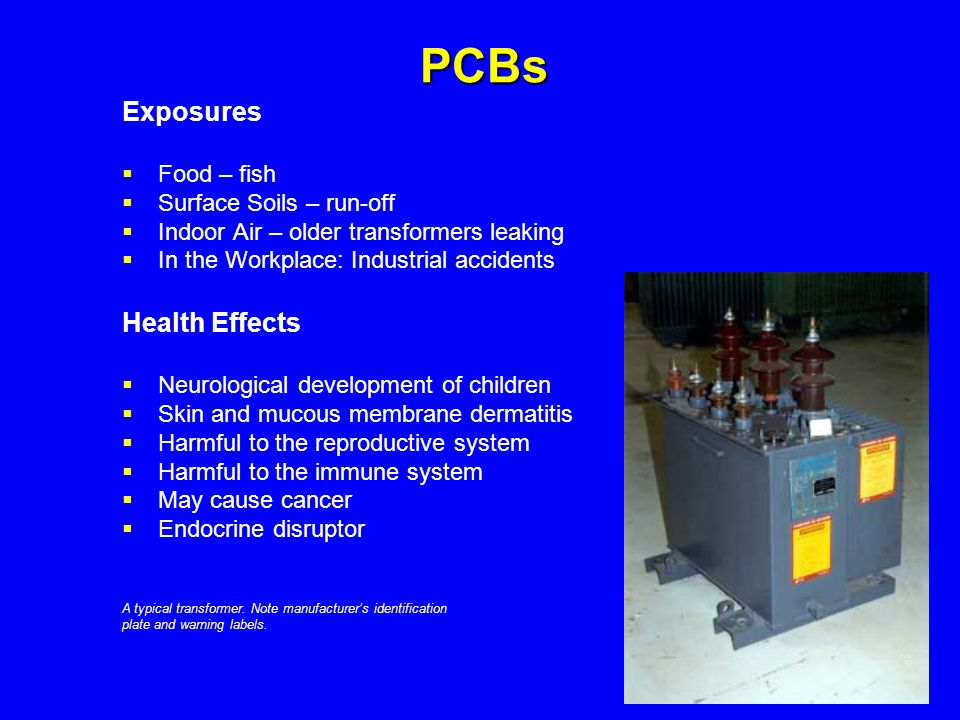 PCBs Exposures  Food – fish  Surface Soils – run-off  Indoor Air – older transformers leaking  In the Workplace: Industrial accidents Health Effec