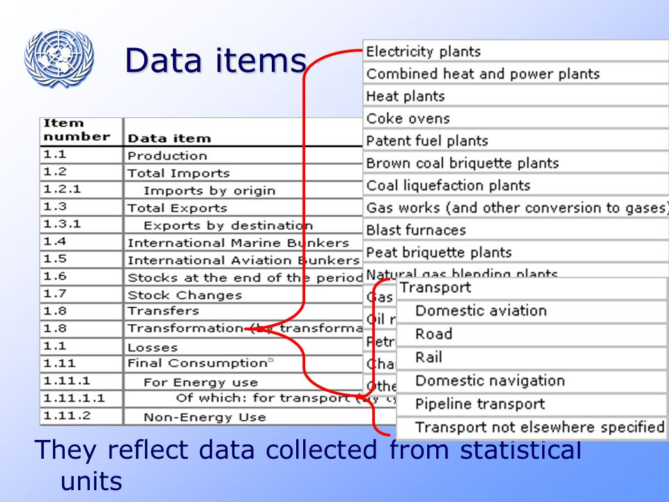 Data items They reflect data collected from statistical units