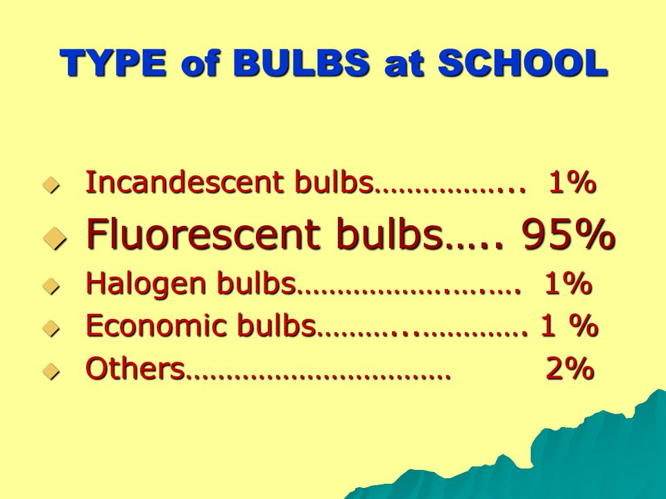 TYPE of BULBS at SCHOOL  Incandescent bulbs……………... 1%  Fluorescent bulbs….. 95%  Halogen bulbs……………….….…. 1%  Economic bulbs………...…………. 1 %  Oth