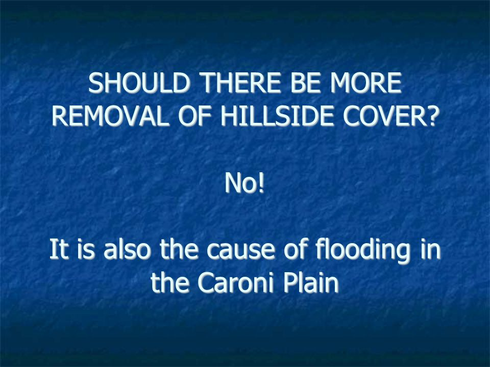 SHOULD THERE BE MORE REMOVAL OF HILLSIDE COVER. No.