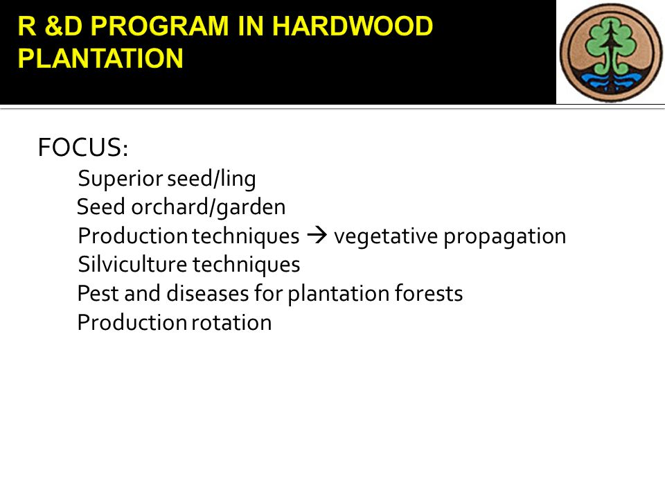 FOCUS: Superior seed/ling Seed orchard/garden Production techniques  vegetative propagation Silviculture techniques Pest and diseases for plantation forests Production rotation