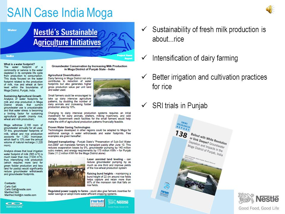 SAIN Case India Moga Sustainability of fresh milk production is about...rice Intensification of dairy farming Better irrigation and cultivation practices for rice SRI trials in Punjab