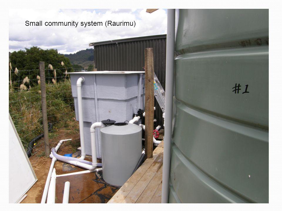 Small community system (Raurimu)