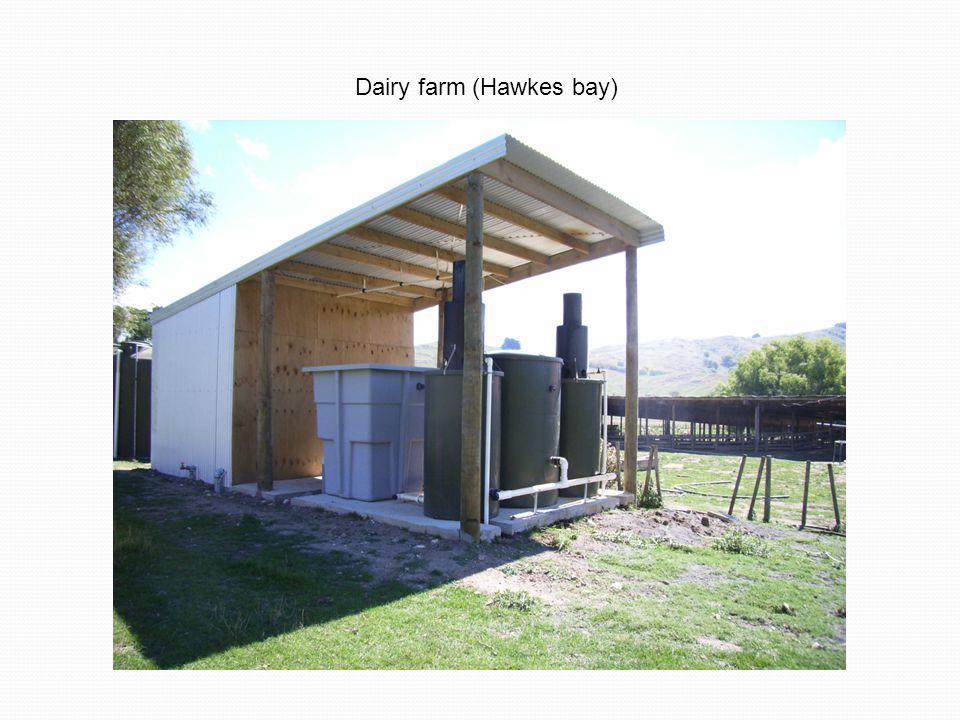 Dairy farm (Hawkes bay)