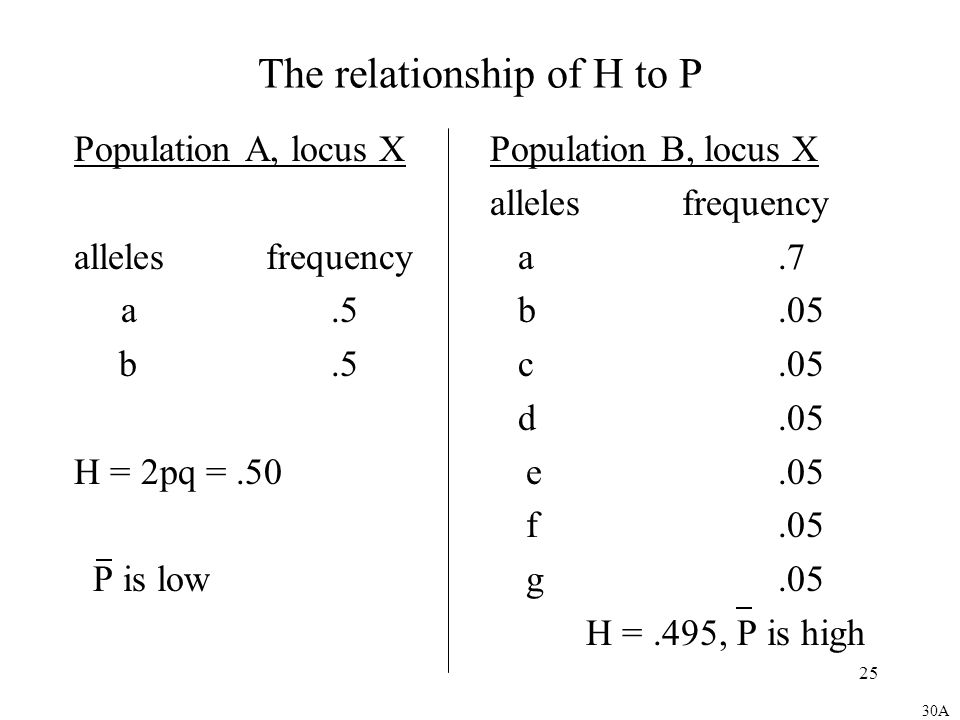 25 The relationship of H to P Population A, locus X allelesfrequency a.5 b.5 H = 2pq =.50 P is low Population B, locus X allelesfrequency a.7 b.05 c.05 d.05 e.05 f.05 g.05 H =.495, P is high 30A