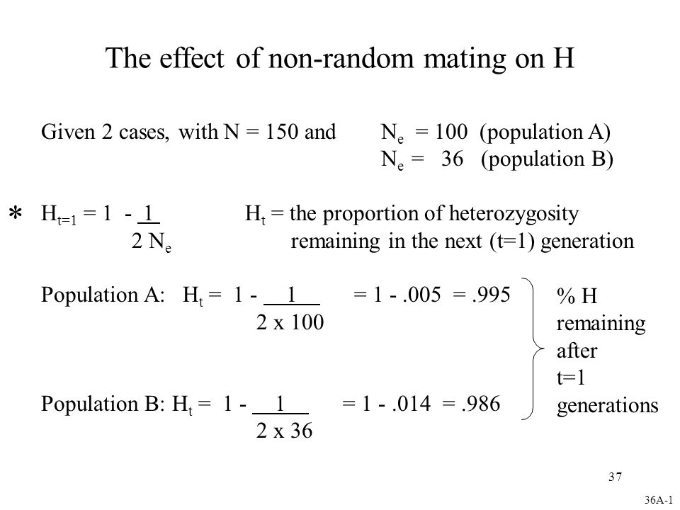 37 The effect of non-random mating on H Given 2 cases, with N = 150 andN e = 100 (population A) N e = 36 (population B) H t=1 = 1 - 1 H t = the proportion of heterozygosity 2 N e remaining in the next (t=1) generation Population A: H t = 1 - 1 = 1 -.005 =.995 2 x 100 Population B: H t = 1 - 1 = 1 -.014 =.986 2 x 36 % H remaining after t=1 generations * 36A-1