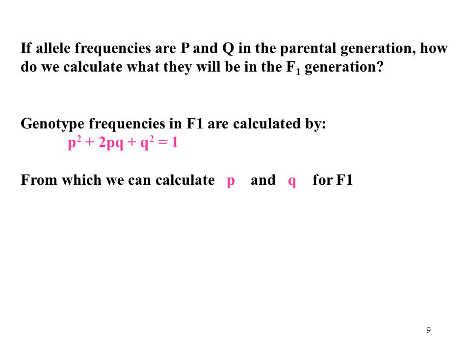 9 If allele frequencies are P and Q in the parental generation, how do we calculate what they will be in the F 1 generation? Genotype frequencies in F