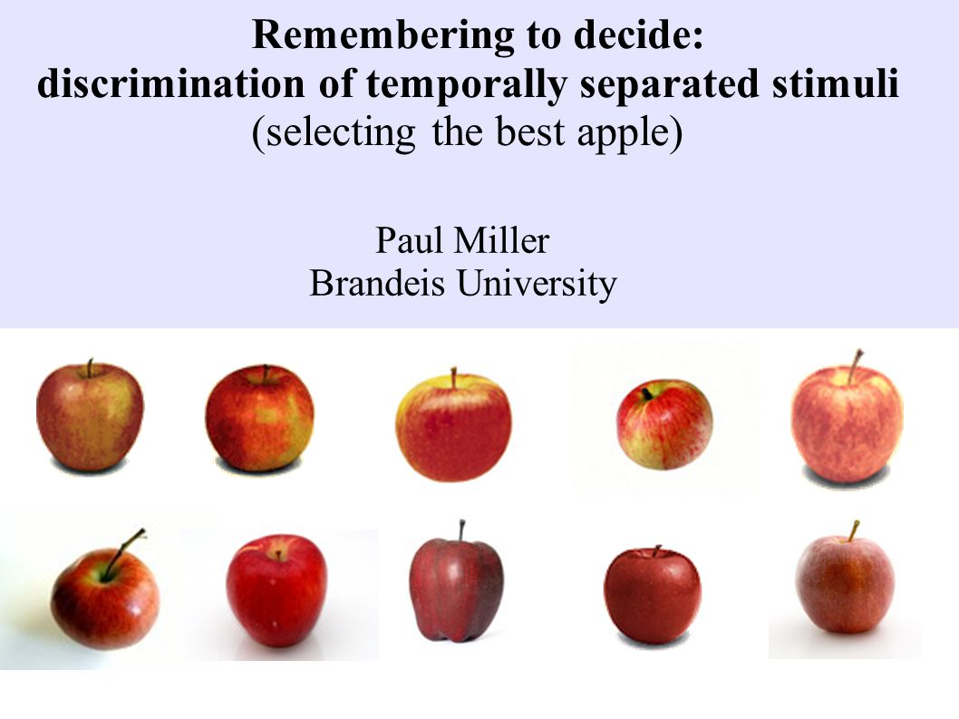 Remembering to decide: discrimination of temporally separated stimuli (selecting the best apple) Paul Miller Brandeis University