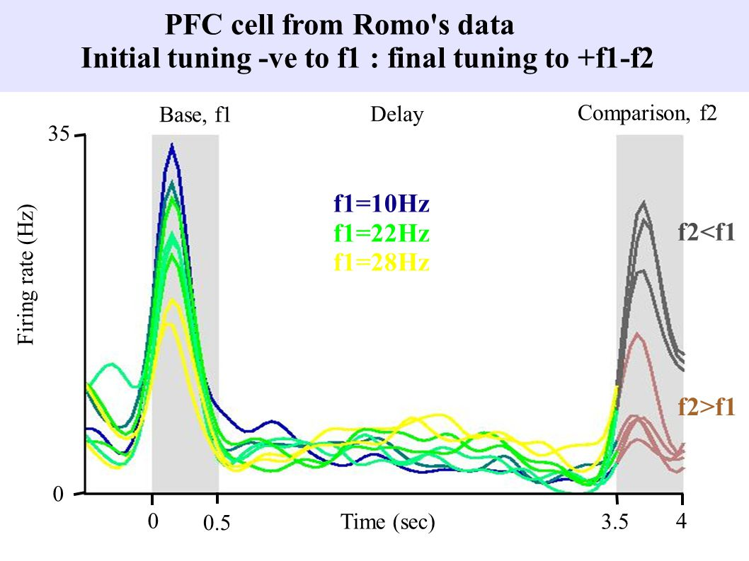 PFC cell from Romo s data Initial tuning -ve to f1 : final tuning to +f1-f2 Base, f1 Delay Comparison, f2 Time (sec) 0 0.5 3.5 4 0 35 Firing rate (Hz) f2<f1 f2>f1 f1=10Hz f1=22Hz f1=28Hz